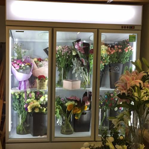 宜昌市地区哪里有能买到双开门鲜花保鲜柜