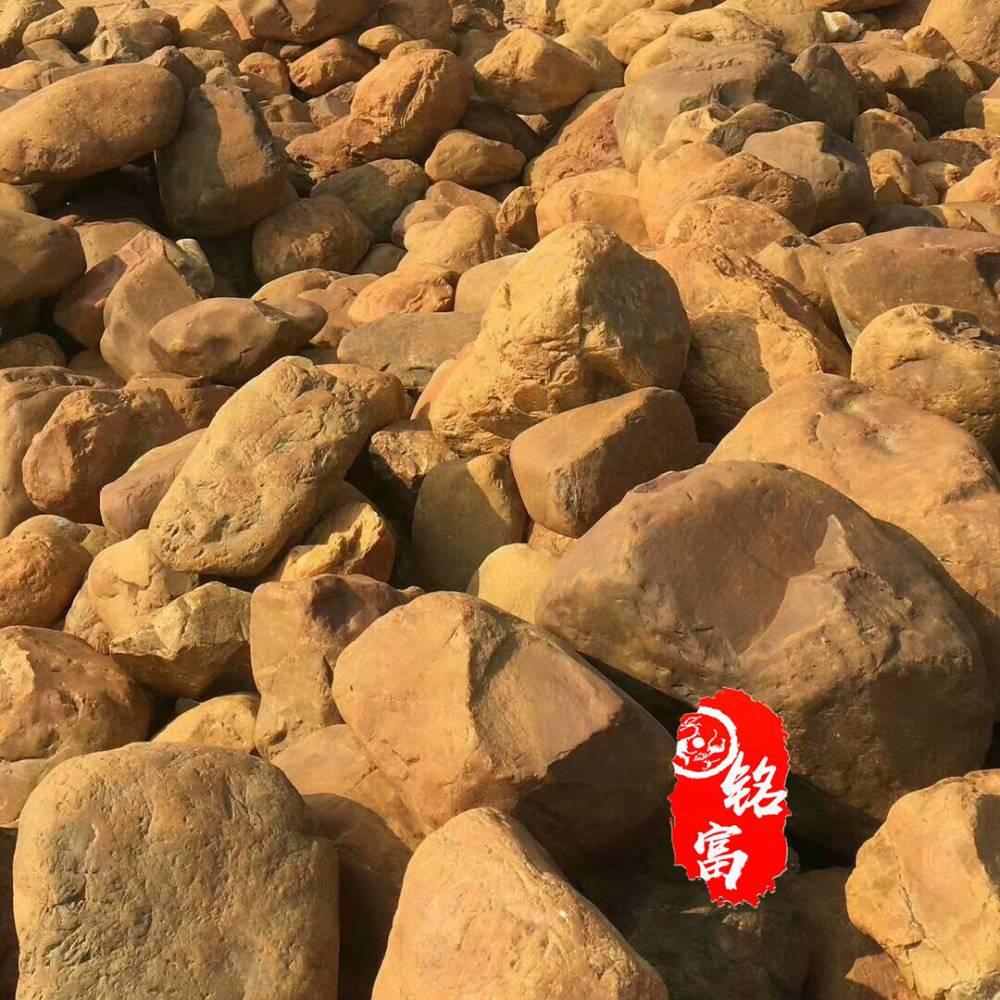 绿化景观石刻字 招牌园林石采购 园林设计专用黄蜡石 校园文化石 刻字门牌石