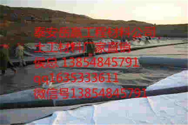 http://himg.china.cn/0/4_549_237882_600_400.jpg