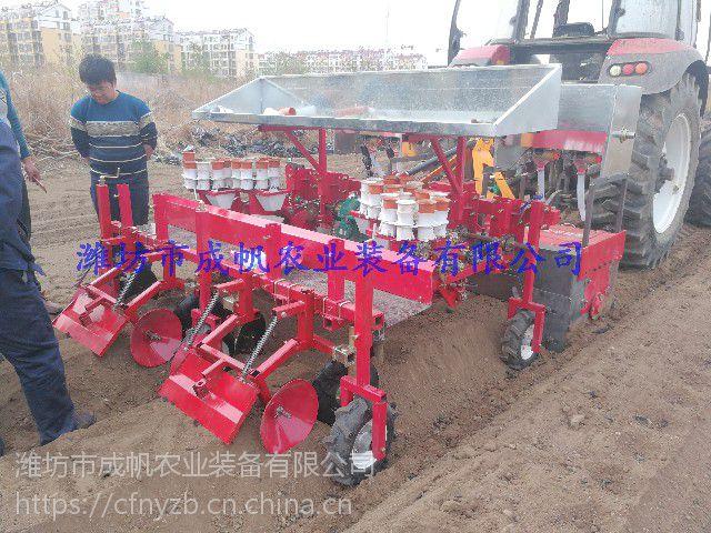 辣椒菊花蔬菜种植铺膜浇水移栽机械