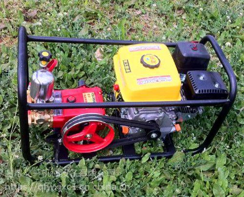小型手推式喷雾器 消毒车文轩 小麦地用喷药打药机