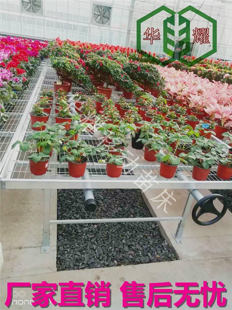 温室苗床一站式购齐-热镀锌苗床-超值低价-好评爆表-厂家直销