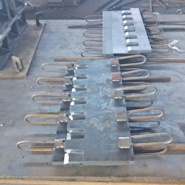 陆韵 D型桥梁伸缩缝 维护与养护