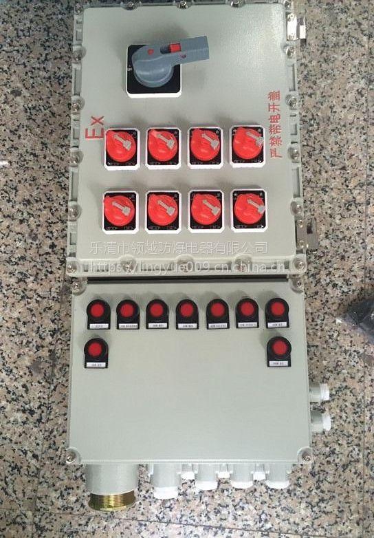 BDG58-T5防爆照明配电箱