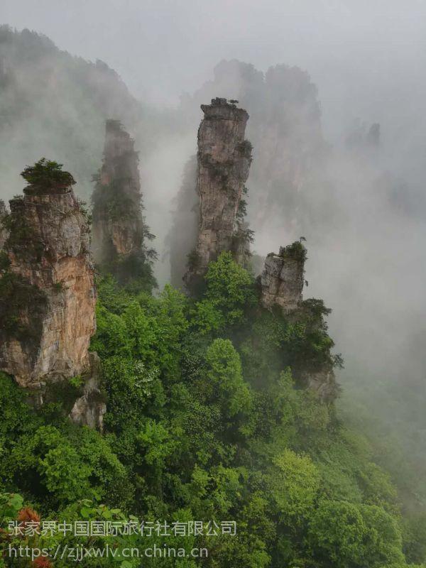 张家界(黄龙洞)宝峰湖(玻璃桥)大峡谷一日游