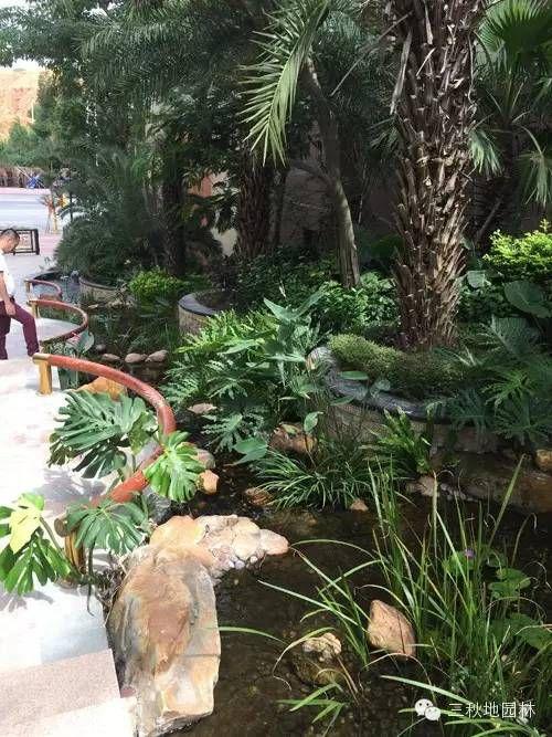 广东住宅小区庭院房子景观设计水景花园有入室案例的设计图图片