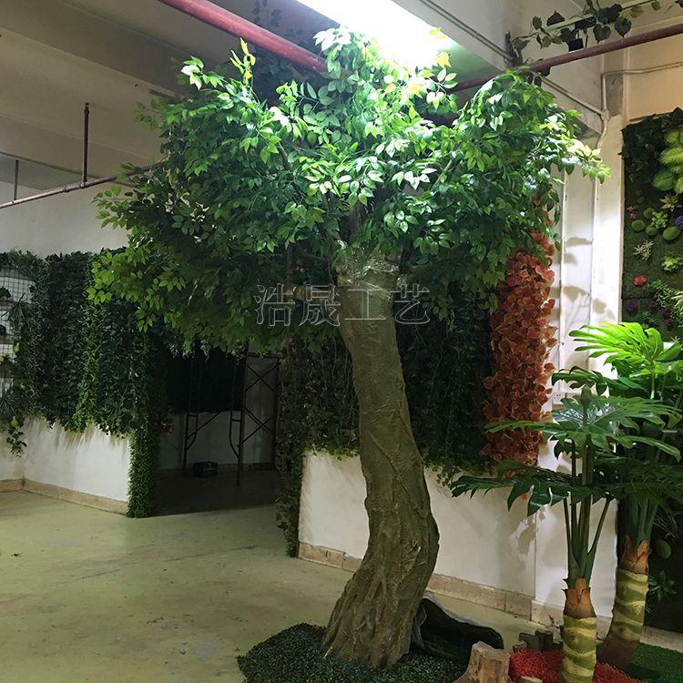 什么仿真大树摆放在室内比较好看呢? 东莞企石浩晟仿真植物公司可以为您量身定制