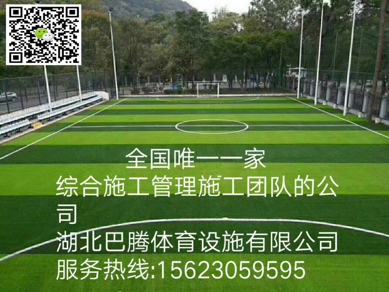 http://himg.china.cn/0/4_559_236190_800_600.jpg