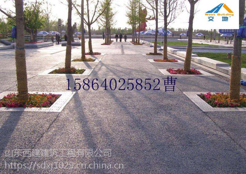 交地 江川 透水性混凝土用途 15864025852