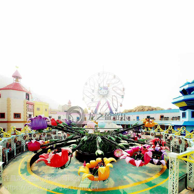 供应龙之盈游乐新型儿童游乐设施花海乐园 LZY-HHLY-8