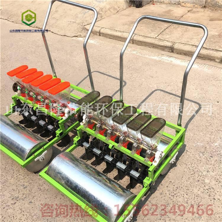 电动小型蔬菜播种机 免间苗蔬菜精量播种机 邦腾供应