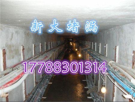 http://himg.china.cn/0/4_569_242958_450_341.jpg