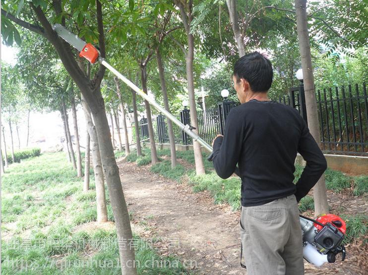 园林高枝汽油锯 润华 便携式树篱修剪机 伸缩式树木剪枝机