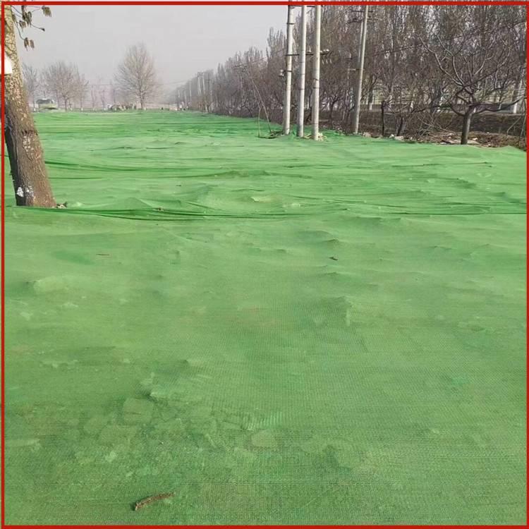 2针防尘网 工地防尘网材质 生产盖土网的丝