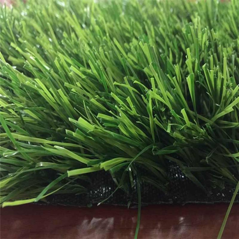北京假草坪 假的草坪墙 户外仿真塑料草地地毯