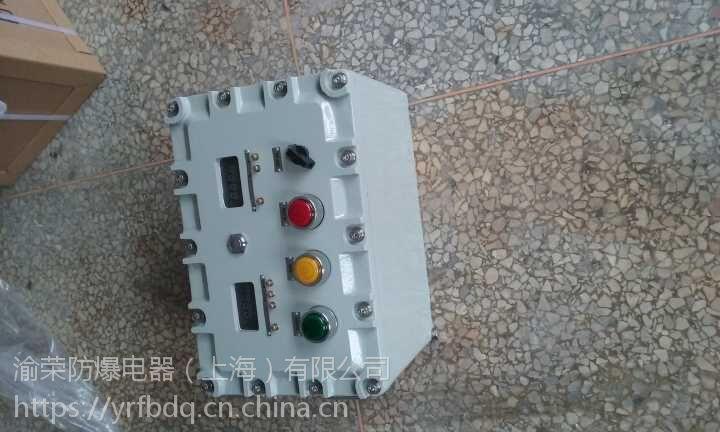 上海专业BXK58系列溶剂回收机防爆电控箱渝荣防爆特价