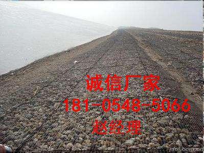 http://himg.china.cn/0/4_576_239208_399_300.jpg