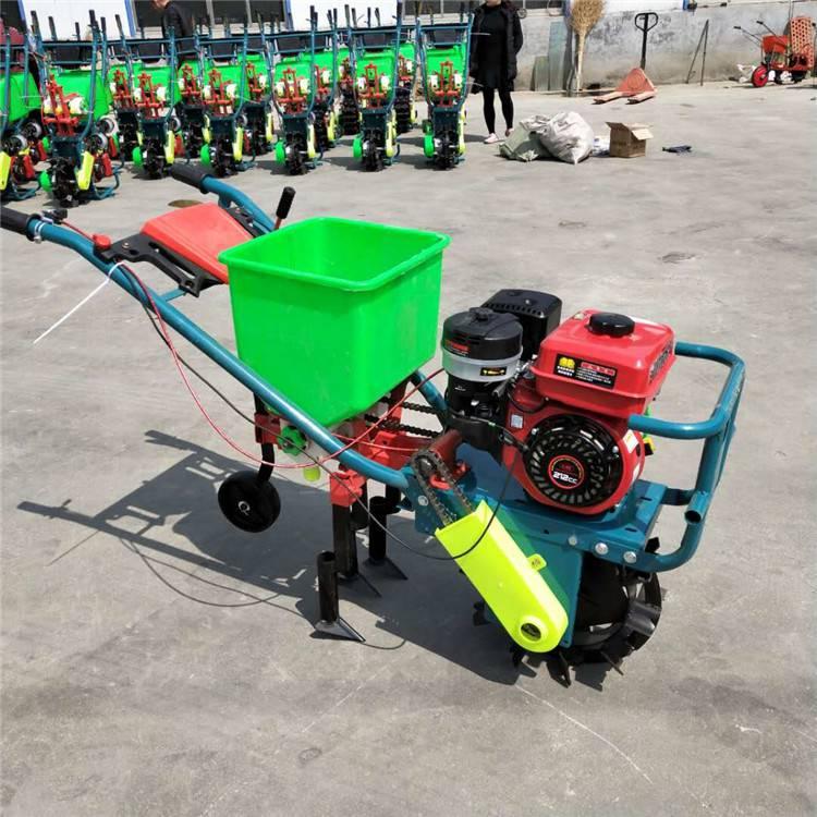 汽油自走式玉米播种机 大马力苞谷种植机 广西玉米施肥机