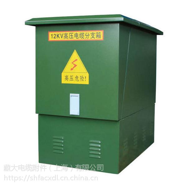 藏大高压电缆分接箱 DFW-12/630 欧式电缆分支箱一进一出不锈钢供应浙江