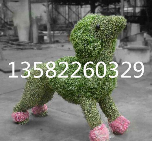 http://himg.china.cn/0/4_579_237694_526_489.jpg