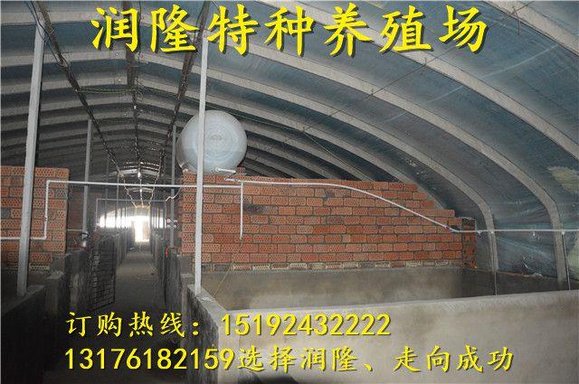 http://himg.china.cn/0/4_582_234518_640_425.jpg
