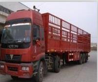 http://himg.china.cn/0/4_583_1014571_201_168.jpg