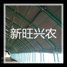 山东新旺兴农种植大棚生产71212养殖大棚厂家
