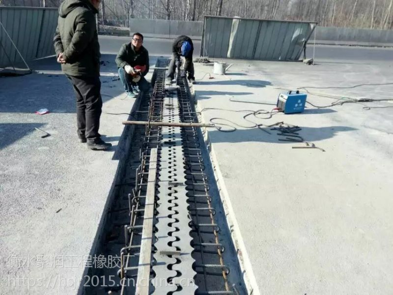 四川省东坡GQF-E型伸缩缝质量好价格合理