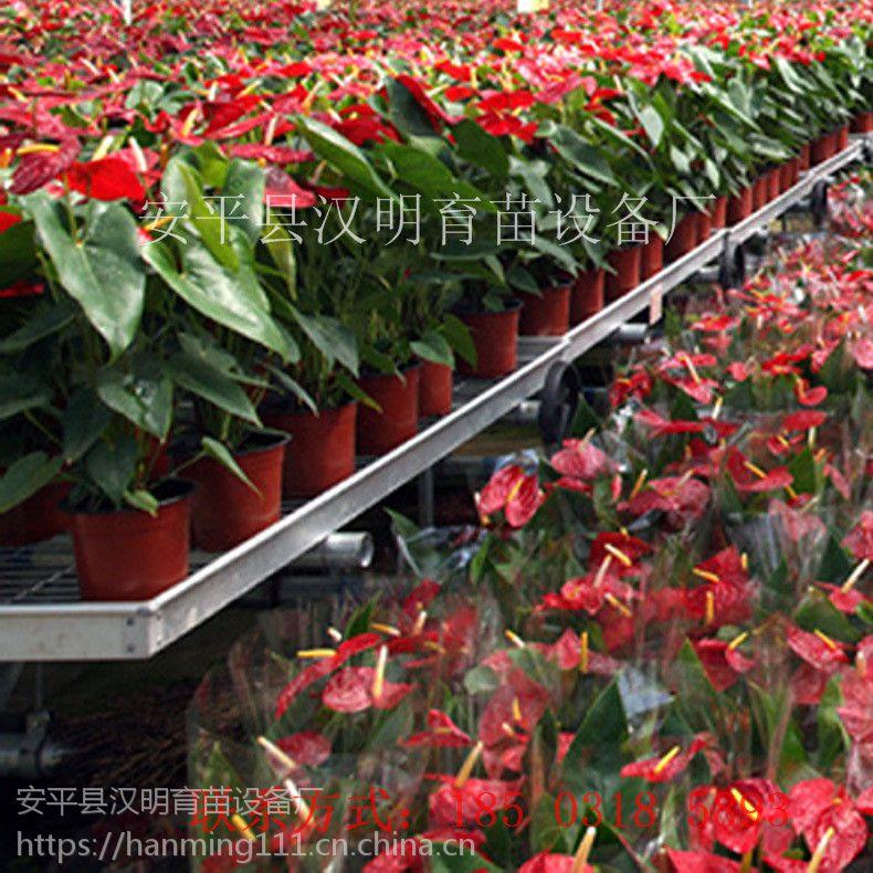 苏州养花专用苗床网 汉明供应养花育苗苗床网片 镀锌层厚