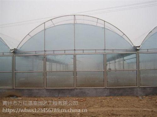 青州万红温室大棚园艺工程有限公司——温室大棚创业好厂家推荐