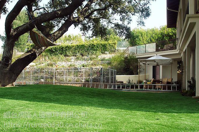 国内专业生产人造草坪 幼儿园专业草 装饰围挡草