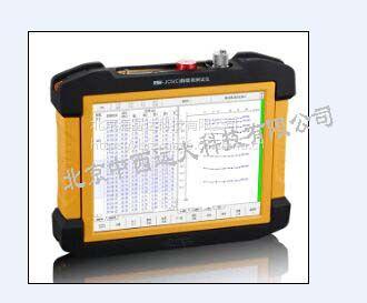 中西(CXZ特价)静载荷测试仪(8通道) 型号:ZY55-RSM-JC5C库号:M406414