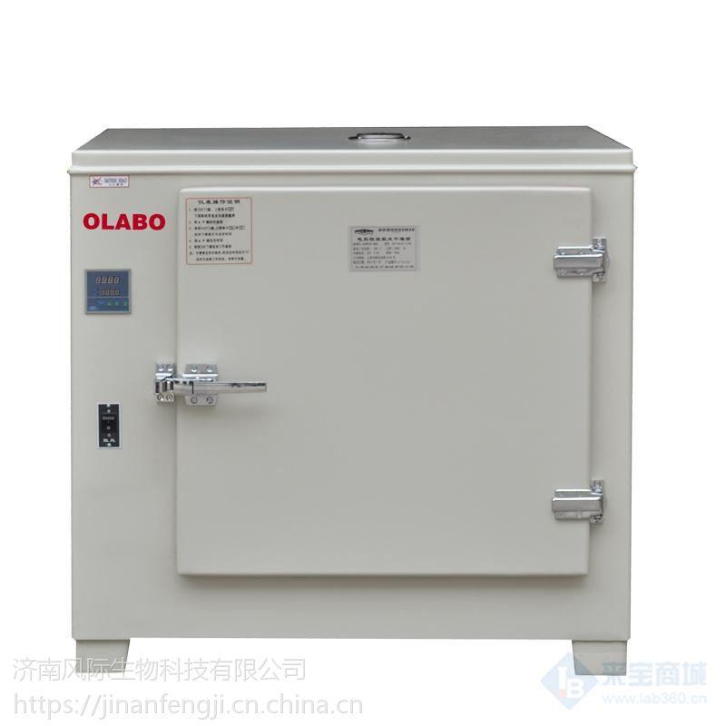 DHG系列电热恒温鼓风干燥箱厂家