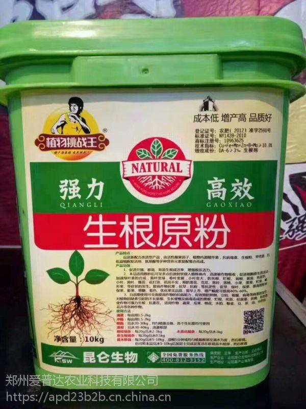 扦插育苗移栽生根剂强力生根壮苗防止死苗烂根