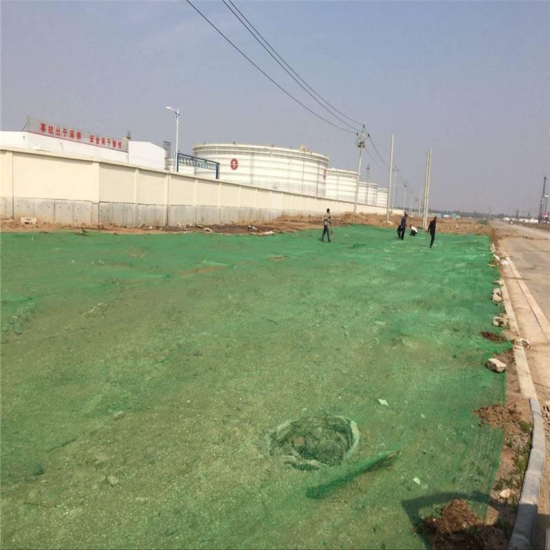 塑料防尘网 防风沙天气盖土网 三针防尘网现货
