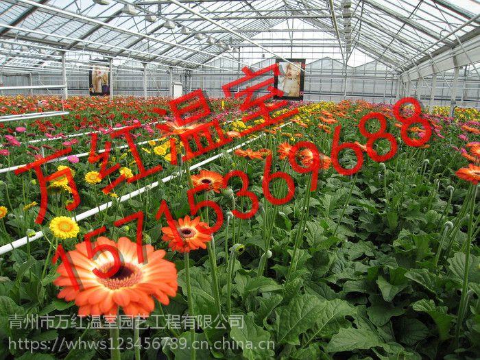 青州万红温室园艺工程有限公司欢迎您到来,咨询热线:15715369688