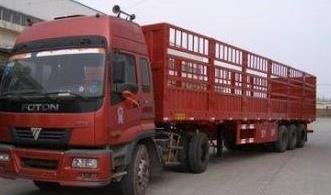 http://himg.china.cn/0/4_605_242104_331_195.jpg