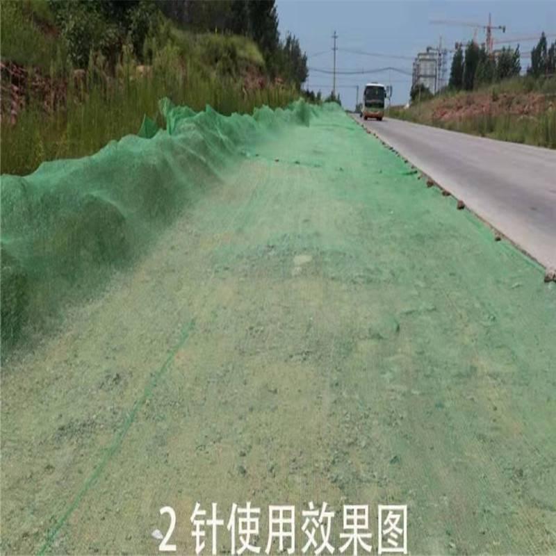 防尘网盖土 覆盖土的网 密目网规格
