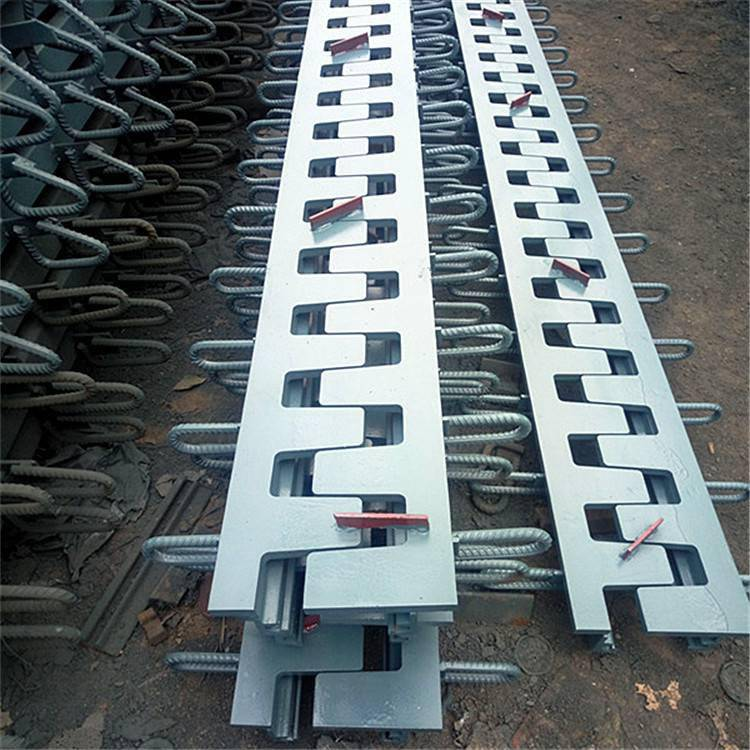 海陵区 Z-120型桥梁伸缩缝 陆韵 伸缩装置 示意图