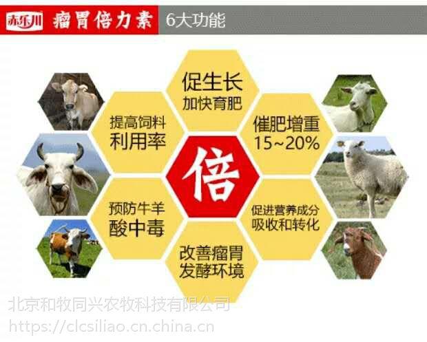 肉羊安全催肥长肉瘤胃素