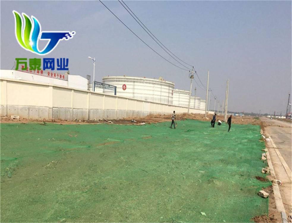江苏工地盖土网 安全遮阳密目网 公路施工绿化网