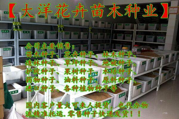 http://himg.china.cn/0/4_618_1054971_600_400.jpg