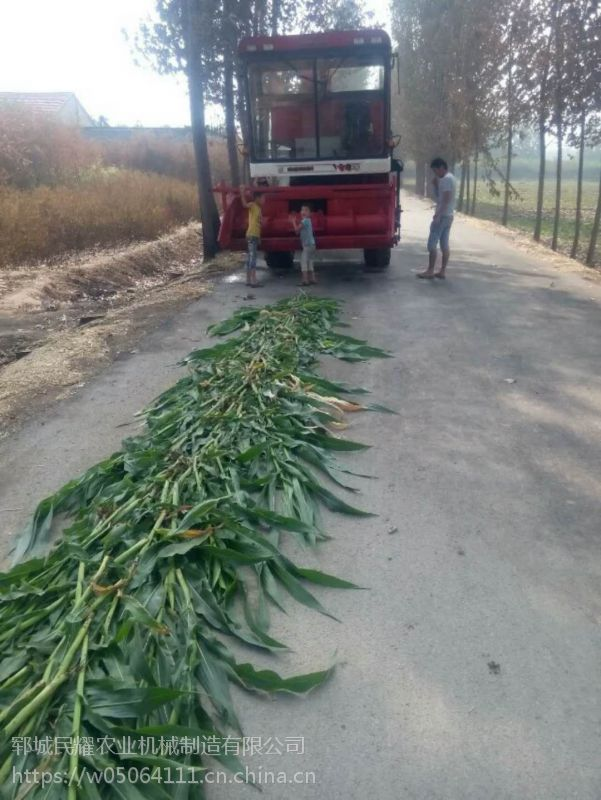 山东养殖机械热销牛羊靑储收割机 秸秆储存收获机 铡草机