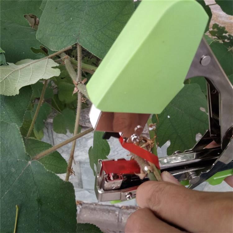 蔬菜植物绑枝机 固定器