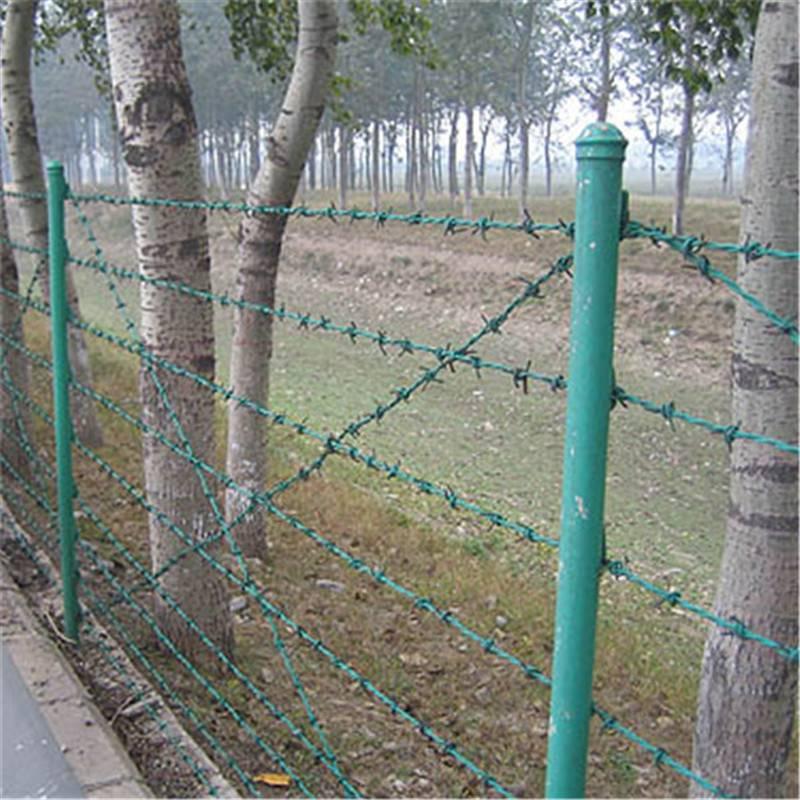 刺绳护栏网 刺绳网报价 热镀锌铁丝网