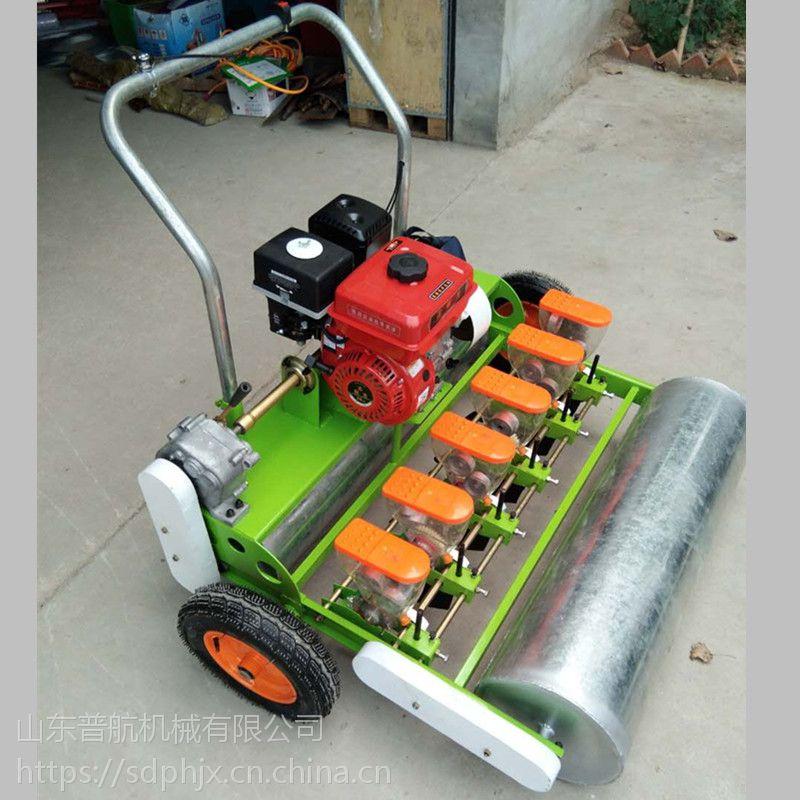 普航小型蔬菜播种机 多功能手推式播种机 苜蓿精播机品牌