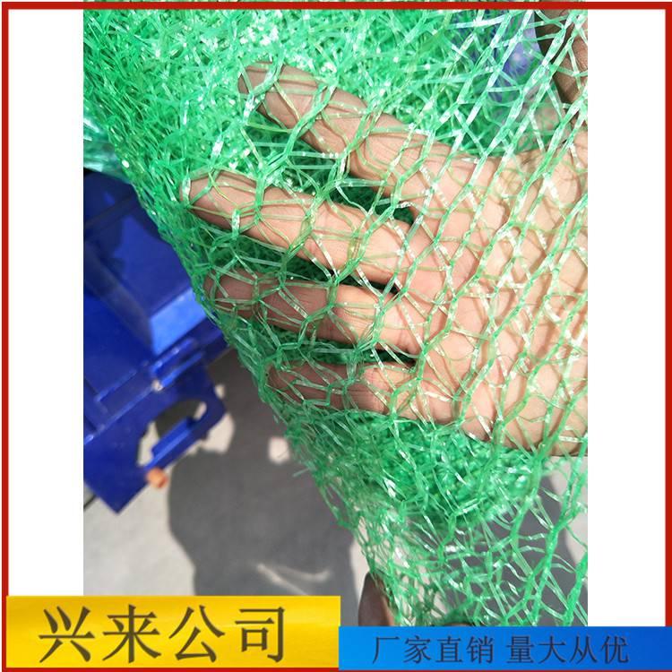 滨州盖土网 邢台防尘网图片 安全防尘网价格