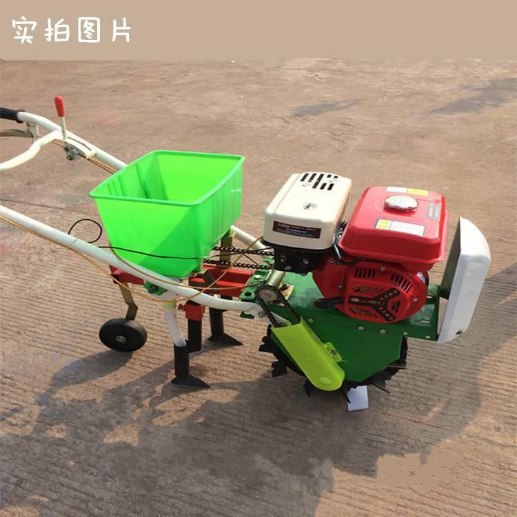 家用小麦播种机 多功能小型施肥机 玉米地除草趟地机