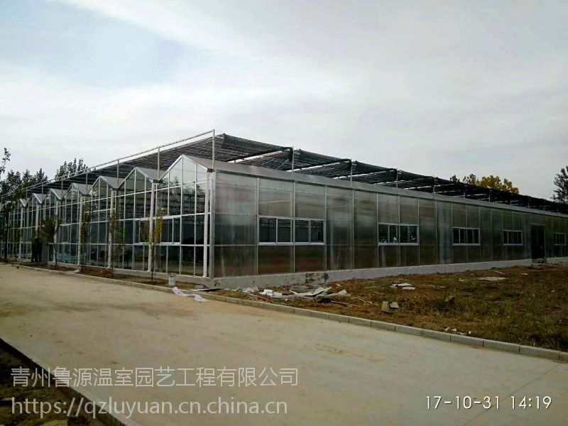 宁夏节水型有机蔬菜温室大棚4米立柱、中空玻璃骨架型专业建造厂家
