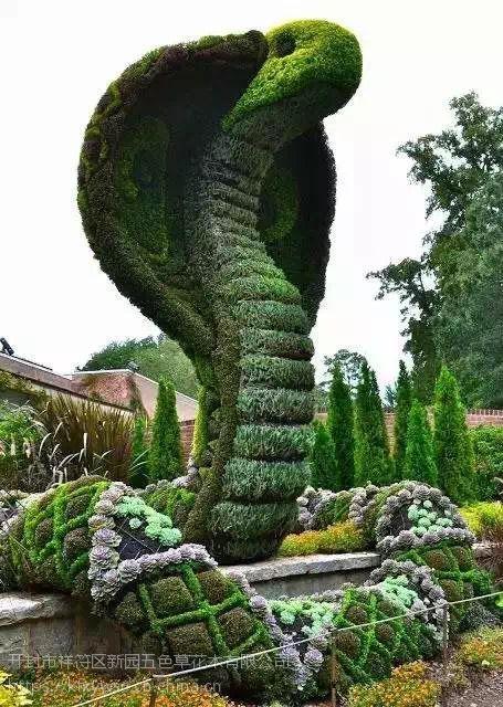 新园五色草观叶立体动物造型